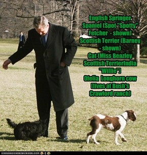 Pets of the US Presidents - George W. Bush