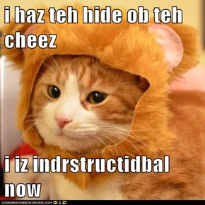 i haz teh hide ob teh cheez  i iz indrstructidbal now