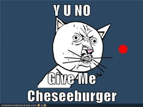 Y U NO   Give Me Cheseeburger