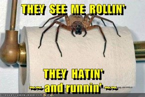 THEY  SEE  ME  ROLLIN'  THEY  HATIN'                                    ~~ and runnin' ~~