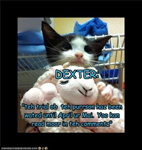Dexter Animal Abuse Trial Postponed