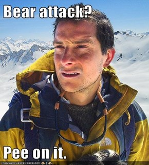 Bear attack?  Pee on it.