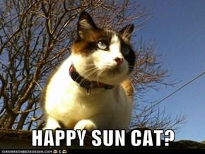 HAPPY SUN CAT?