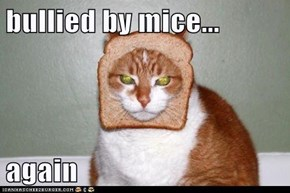 bullied by mice...  again