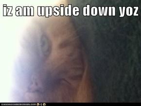 iz am upside down yoz
