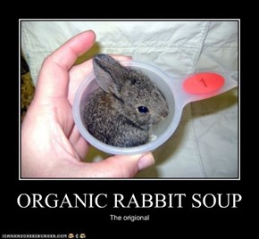ORGANIC RABBIT SOUP