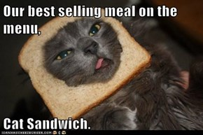 Our best selling meal on the menu,  Cat Sandwich.