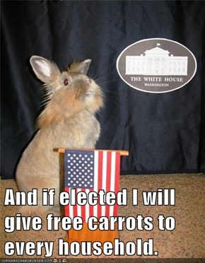 And if elected I will give free carrots to every household.