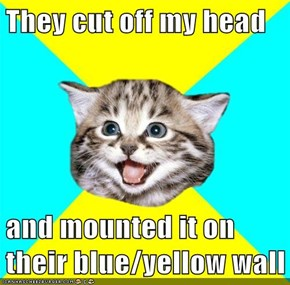 They cut off my head  and mounted it on their blue/yellow wall