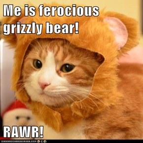 Me is ferocious grizzly bear!  RAWR!
