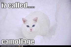 iz called.....  camoflage