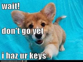 wait! don't go yet i haz ur keys