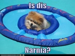 Is dis Narnia?
