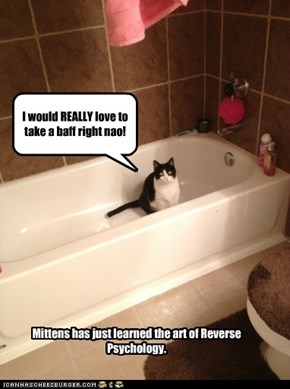 Mittens has just learned the art of Reverse Psychology.