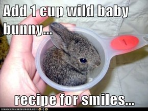 Add 1 cup wild baby bunny...  recipe for smiles...