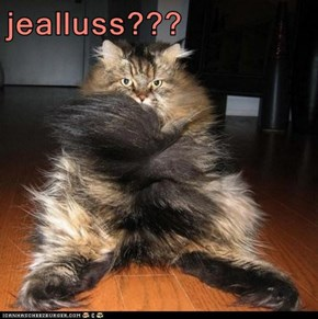 jealluss???