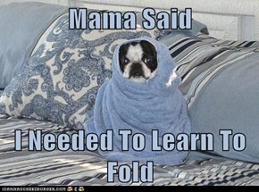 Mama Said   I Needed To Learn To Fold