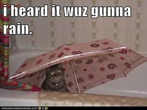i heard it wuz gunna rain.