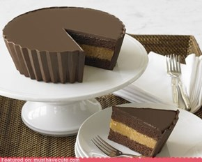 Epicute: Giant Peanut Butter Cup Cake