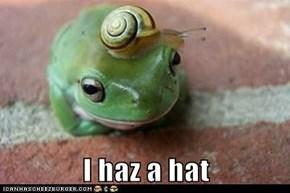 I haz a hat