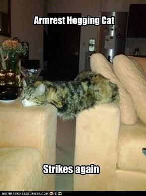 Armrest Hogging Cat