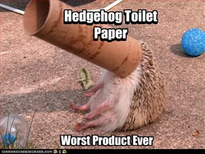Hedgehog Toilet Paper