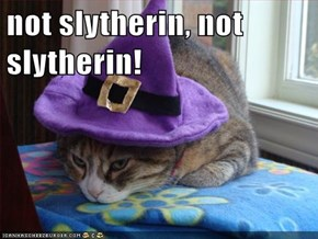 not slytherin, not slytherin!