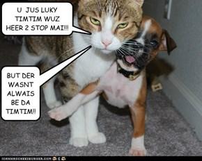 U  JUS LUKY TIMTIM WUZ HEER 2 STOP MAI!!!