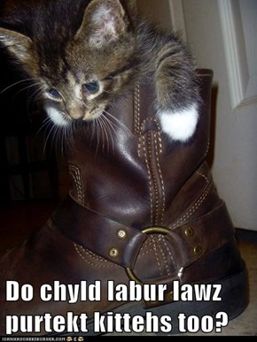 Do chyld labur lawz purtekt kittehs too?