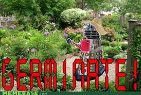 Gardening Is the Master Hobby