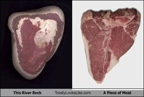 This River Rock Totally Looks Like A Piece of Meat
