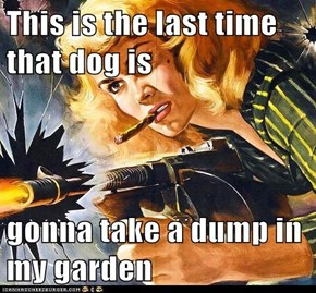 This is the last time that dog is  gonna take a dump in my garden
