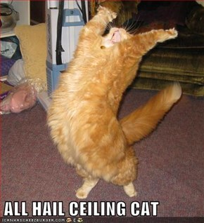 ALL HAIL CEILING CAT