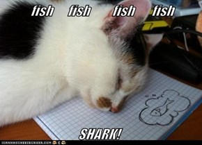 fish      fish         fish       fish                                SHARK!
