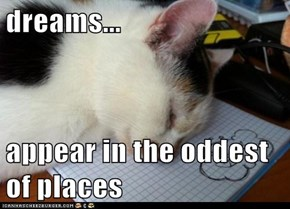 dreams...  appear in the oddest of places