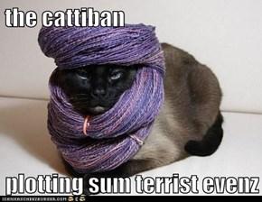 the cattiban  plotting sum terrist evenz