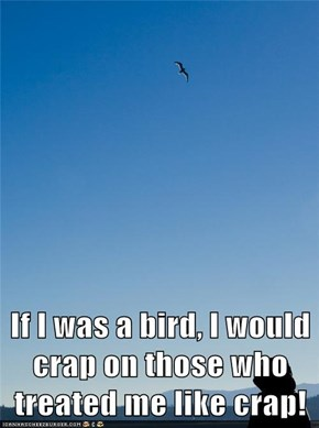 If I was a bird, I would crap on those who treated me like crap!