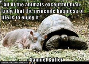 """All of the animals except for man know that the principle business of life is to enjoy it.""   - Samuel Butler"