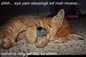 shhh... eye yam sleepingk wif mah mowse...  nuthin is rong wif dat, so shhhh...