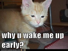 why u wake me up early?