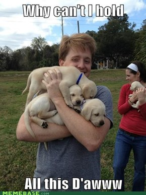 Love ALL the puppies!