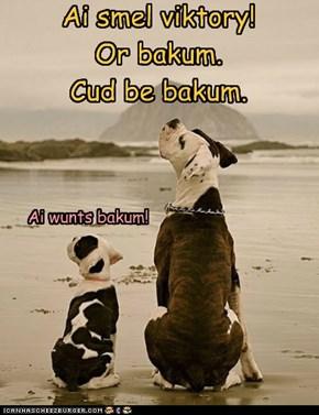 Bakum's gud!