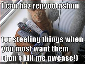 I can haz repyootashun  for steeling things when you most want them (donʻt kill me pwease!)