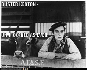 BUSTER KEATON - UN-MOO-VED AS EVER...