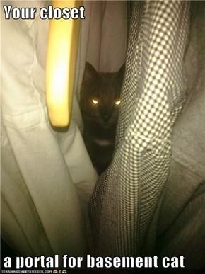 Your closet  a portal for basement cat