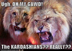 Ugh, OH MY GAWD!  The KARDASHIANS?? REALLY??