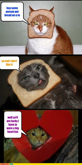 Bread cats