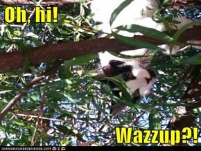 Oh, hi!  Wazzup?!