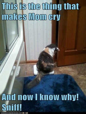 This is the thing that makes Mom cry  And now I know why! Sniff!