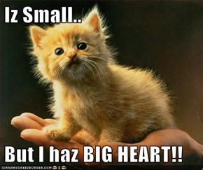 Iz Small..  But I haz BIG HEART!!